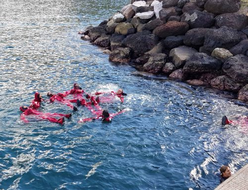Formations maritimes à Nuku Hiva, Marquises